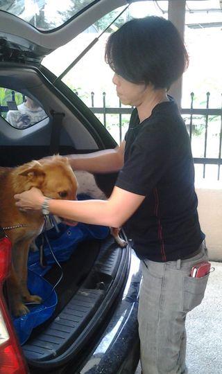 Susanleashingdog